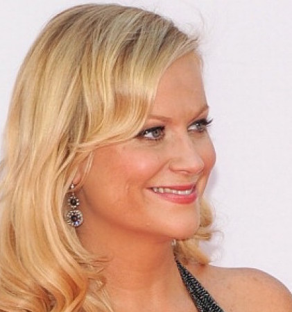 Amy Poehler Wiki, Husband, Divorce or Boyfriend and Net Worth