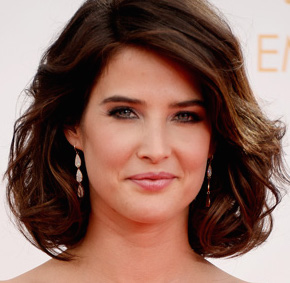 Cobie Smulders Wiki, Husband, Pregnant, Baby and Net Worth
