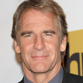 Scott Bakula Wiki, Bio, Wife, Divorce and Net Worth