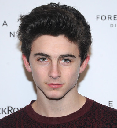Timothee Chalamet Wiki, Bio, Age, Girlfriend and Dating or Gay