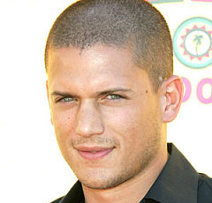 Wentworth Miller Wiki, Married, Wife, Girlfriend, Dating or Gay(Boyfriend)
